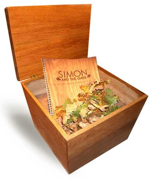 Simon_box_low